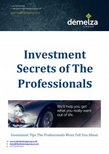 Investment Secrets of The Professionals